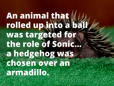 Video Game Facts Sonic